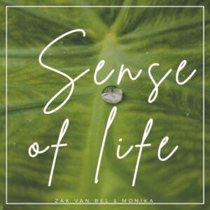 Flowing Vibes | Sense of Life Micro SD-Karte